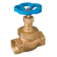 Globe Valves with Threaded Connection