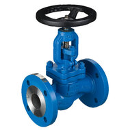 Globe Valves with Flange Connection
