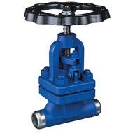 Globe Valves with Welding Connection