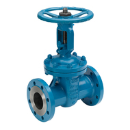 Gate Valves with Flange Connection