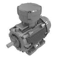 Three-Phase AC Motors (ATEX)