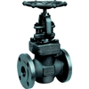"Globe valve 1772 casted steel Class 600 1"""