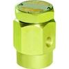 """Vacuumbreker voor stoom fig. 822 serie VB14 messing 1/2""""BSPP"""