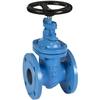 Gate valve fig. 1292 cast iron flange