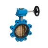 Butterfly valve fig. 6423 ductile iron/aluminiumbronze lug series gearbox