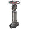 Gate valve fig. 1759 steel socket weld