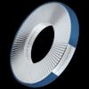 Ring-lock borgring roestvaststaal A4
