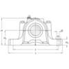 Two bolt hole split plummer block housing cast iron SNL 505